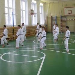 Мастер-класс по бодзюцу Б.В. Манжиковой (II дан), март 2014