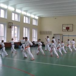 Аттестация младших поясов, ноябрь 2015 (г. Реутов)_9